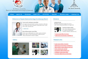 Ain Shams University Board Of Hepato-Gastroenterology & Endoscopy Website