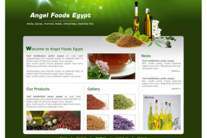 Angel Foods Egypt Website
