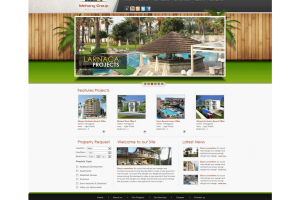 Mehany Group Website